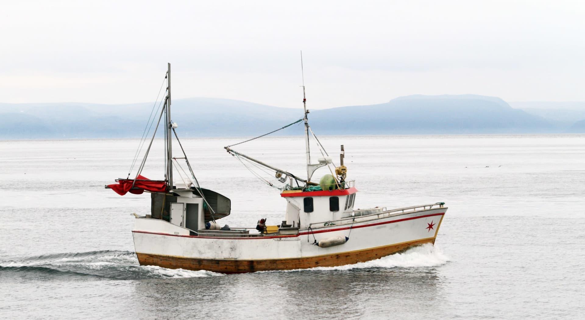 Loss of license skal gi økonomisk sikkerhet når en sjømann ikke lenger får lov til å jobbe på sjøen. Det bryr ikke Tryg forsikring seg noe om, og vil ikke betale slik erstatning.