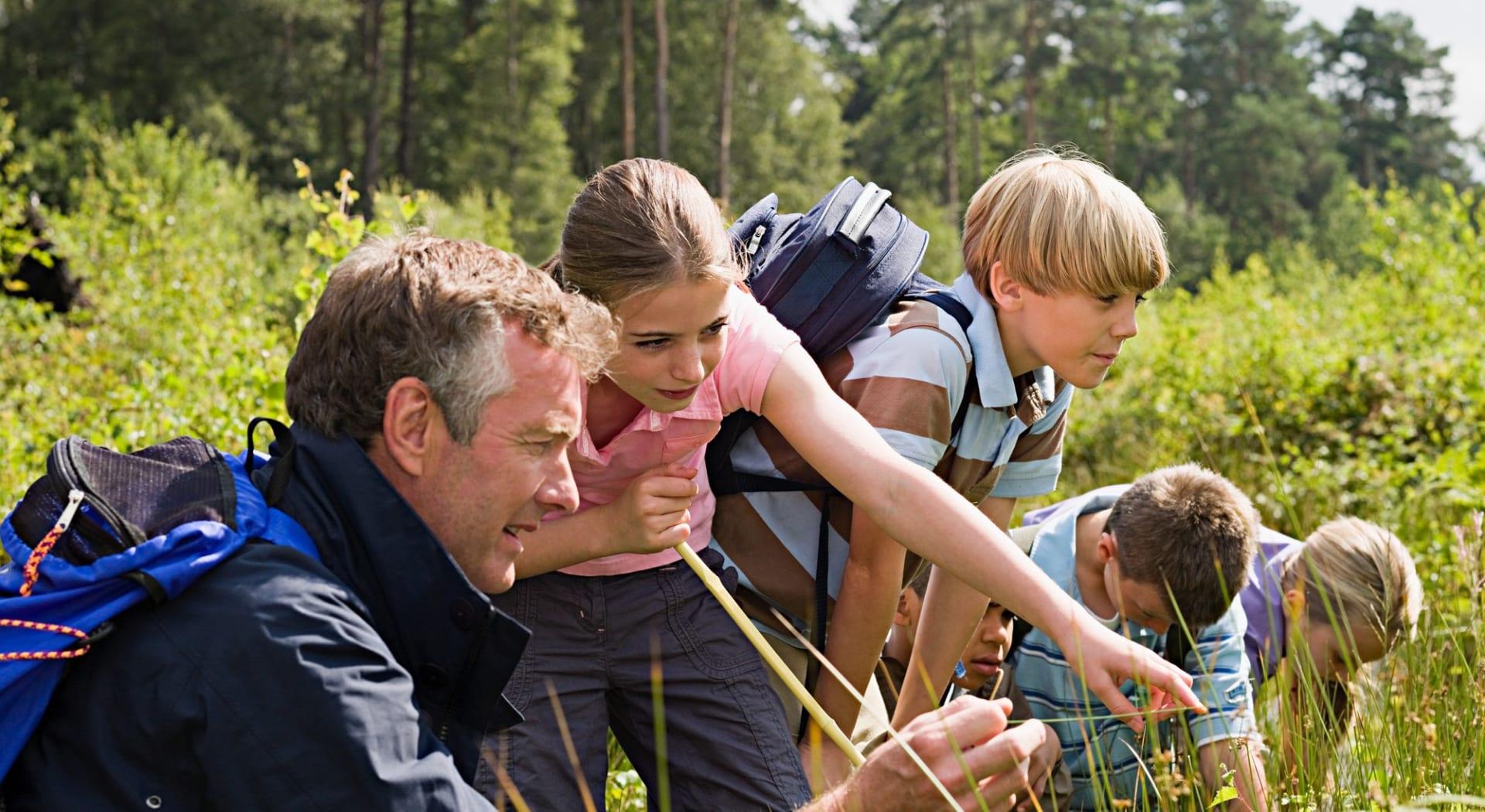 Lær mer om dyr og plantelivet hos Besøkssenter Våtmark avd. Østensjøvannet