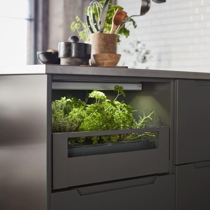 Dyrk urter og grønnsaker på kjøkkenet