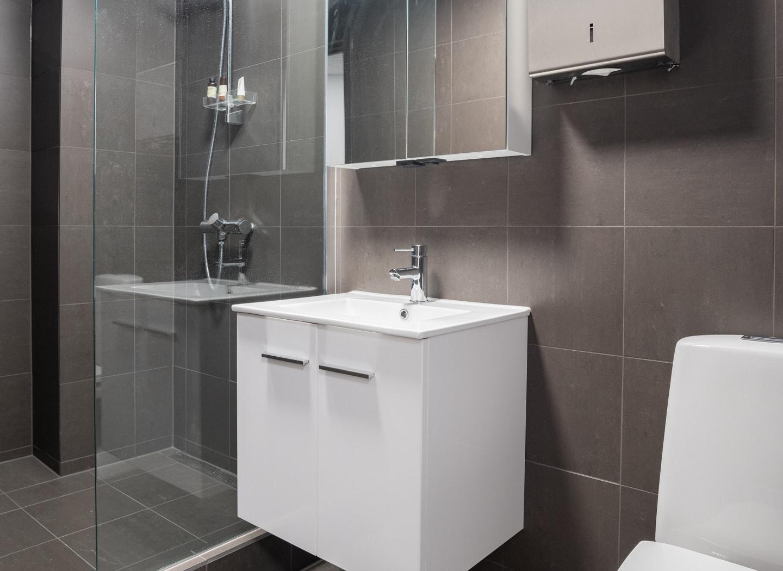 Moderne toalett med dusj
