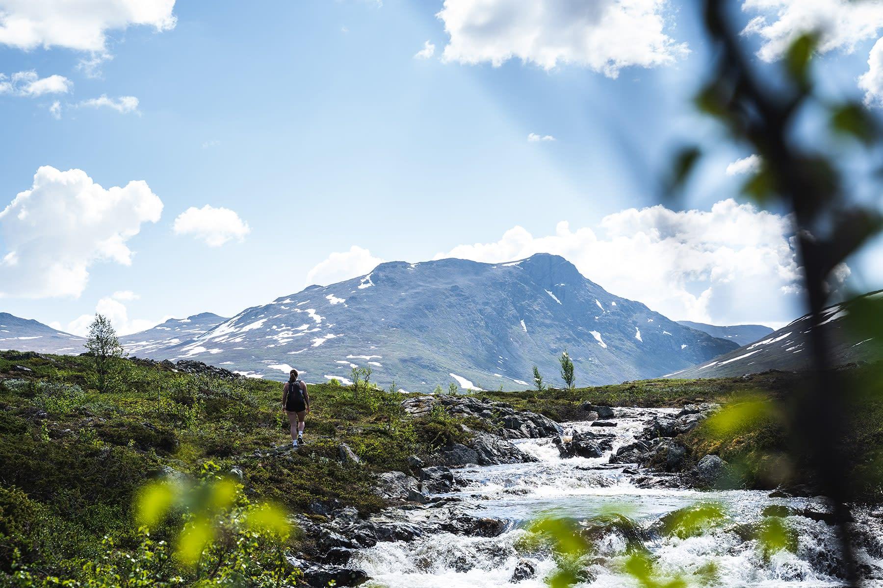Foto Knut Trøim.